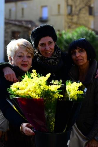 Marche de Collioure : Les trois Graces ! Dimanche 18.01.2015 Photo numero  DSC_3240