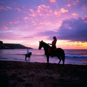 Horse Riding - (c) Malta Tourism Authority