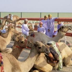 (c) Oman Tourism
