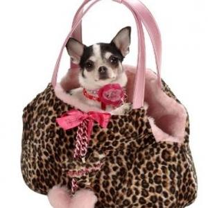 Plus beau qu'un simple sac pour chien