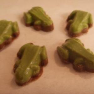 grenouille chocolat lait avec pistache
