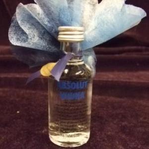 Bouteille Vodka 50 ml 4.45