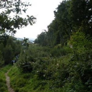 voie Genin, approche de Ste-Anne, le chemin se fait plus ouvert
