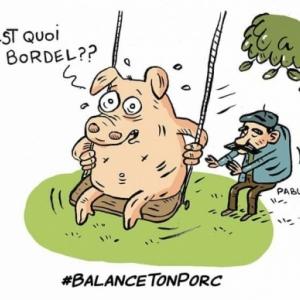 Balance ton porc.