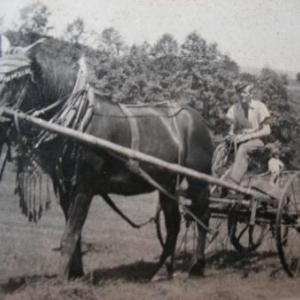 Paul Delsemme aux labours dans une ferme bavaroise
