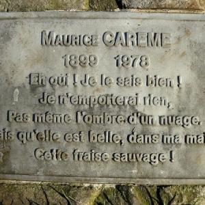 """... qu'il va falloir enterrer une seconde fois (photo """"Jardindesartistes"""")"""