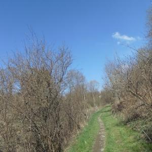 Vélostrade de Houffalize à Taverneux