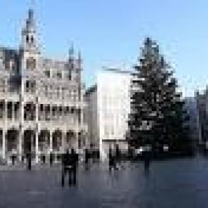 dhnet.be - Au temps ou le sapin venait de la province de Luxembourg, de l'Ardenne.