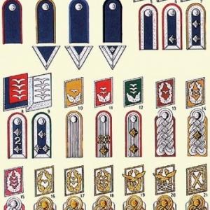 Pattes d'epaule et autres insignes