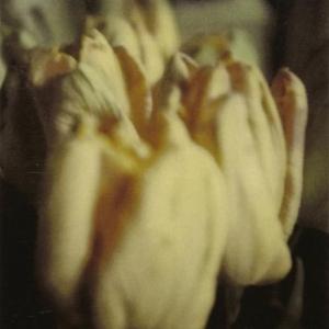 Cy Twombly Tulips, Rome Dryprint on cardboard 1985 43,1 x 27,9 cm © Schirmer/Mosel Verlag - Nicola Del Roscio Foundation