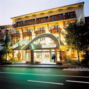 5. Hotel des Vallees La Bresse