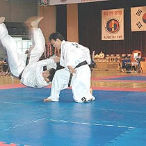 """La pratique du """"hapkido"""", art martial coréen"""