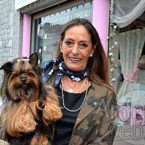 photo Haute couture pour chien