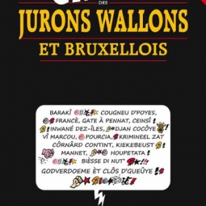 Le GROS DICO des JURONS WALLONS et BRUXELLOIS