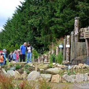 Attraction touristique OVive Dochamps - 7349