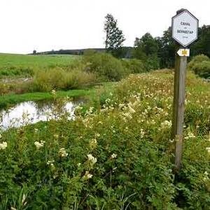 Canal de Bernistap - 8937