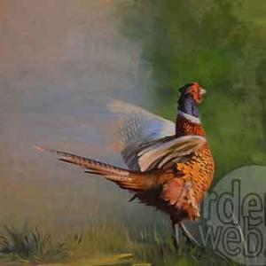 peinture de Marie-Elise-2198