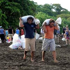 Extinction de la tortue de mer au COSTA RICA-25