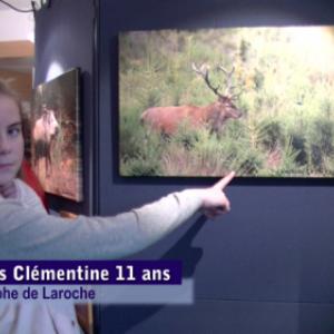 video, exposition Grandeur Nature