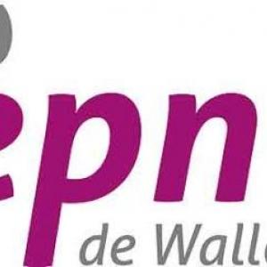 Espace Public Numerique de Wallonie