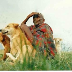 Kenya vieux berger Masai