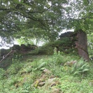 Le Chateau de Salm - Ober-Salm