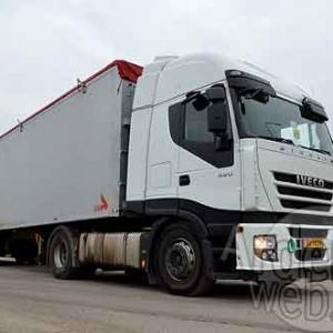 Palifor Logistics-7652