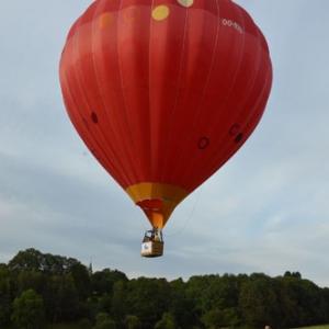 Vol en Montgolfiere en Belgique - 7864
