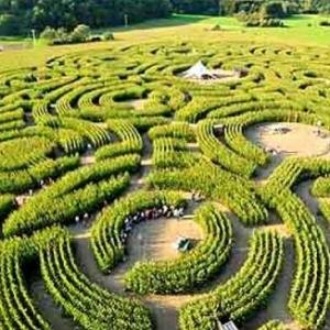 Peter Pan, dans le Labyrinthe de Durbuy
