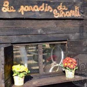 Le paradis de Shanti - 8681