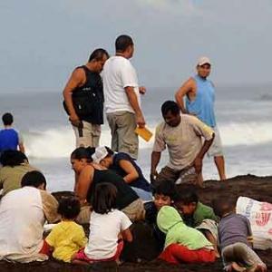 Extinction de la tortue de mer au COSTA RICA-22