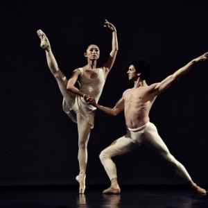 Wim Vanlessen, Ballet Royal de Flandres, Belgique