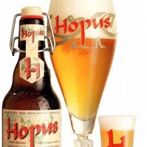 Hopus Primeur