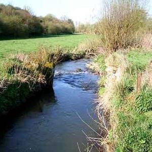 Epuration des eaux usees en zone rurale.