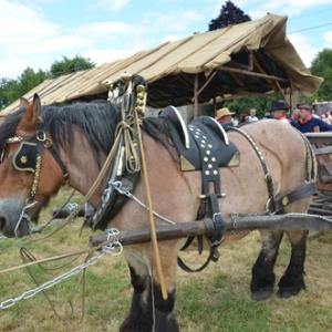 La fete des vieux metiers Vaux-Chavanne-4027