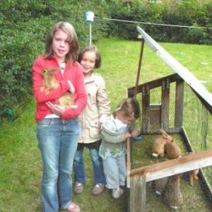 Des lapins a cajoler