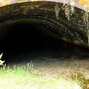 Canal de Bernistap - 8946