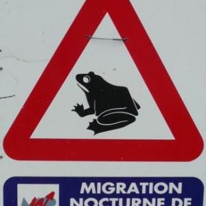 Panneau routier signalant le danger