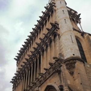 Facade de Notre Dame et ses gargouilles ( Photo : F. Detry )