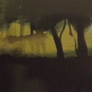 Carine Vermaercke  / Encre sur panneau de bois
