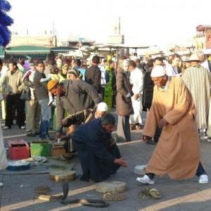 Charmeurs de serpents sur la place Djemaa - El - Fna