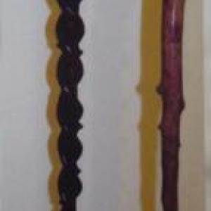 """Les batons appeles """"bordons"""" servaient d'appui aux promeneurs. Ils furent ensuite enjolives par des dessins et des couleurs"""