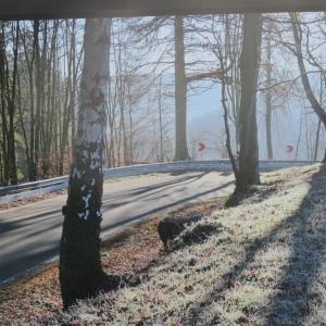 7 La route de Beverce sous le soleil d'hiver