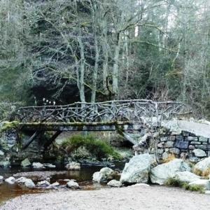 Le Pont du Centenaire
