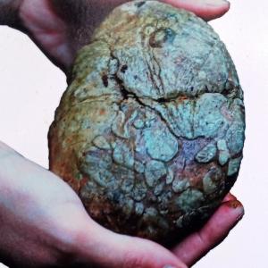 La structure du poudingue de Malmedy