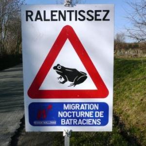 """Panneau """"routier"""" saisonnier"""