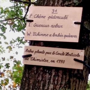 """Promenade du """"Thier des Oies"""""""