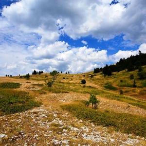 5 La montagne de Lure et son abbaye