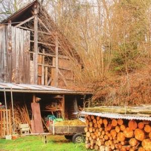 9 Reserve de bois