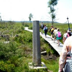 Borne - frontiere dans la Fagne wallonne ( photo O. Servais )